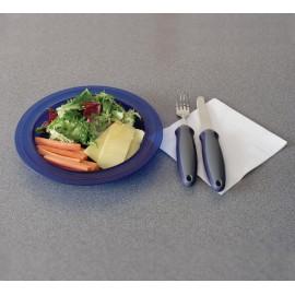 Assiette à Rebords Larges AA5620B, Assiette creuse en polycarbonate Medeci - Bleu